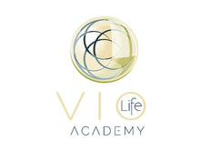 Violife high res academy 3d preview
